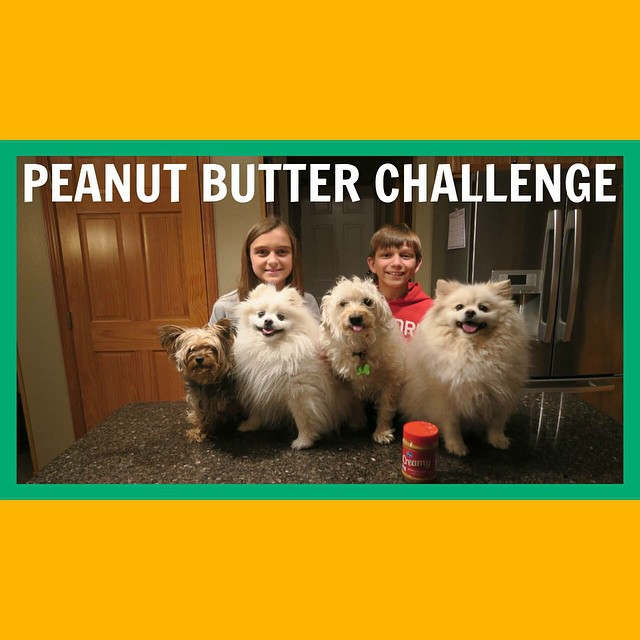 The Dogs eat some peanut butter!! Watch today's video!